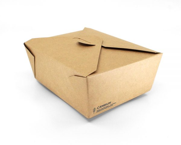 Take-away box 46oz